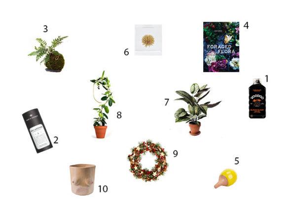 regali di natale green 2019